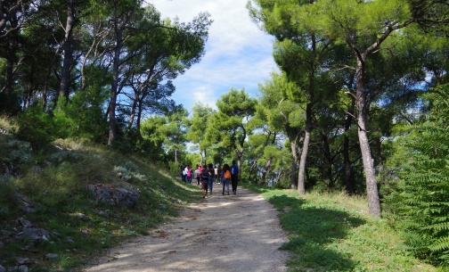 Comenius project students participated in Sunce Green trip
