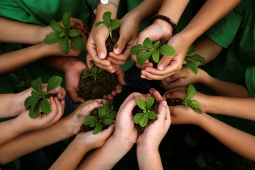 Info workshops within Volunteer for Nature, Volunteer for Yourself Project have started