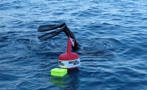 Marine habitats inventarisation manual