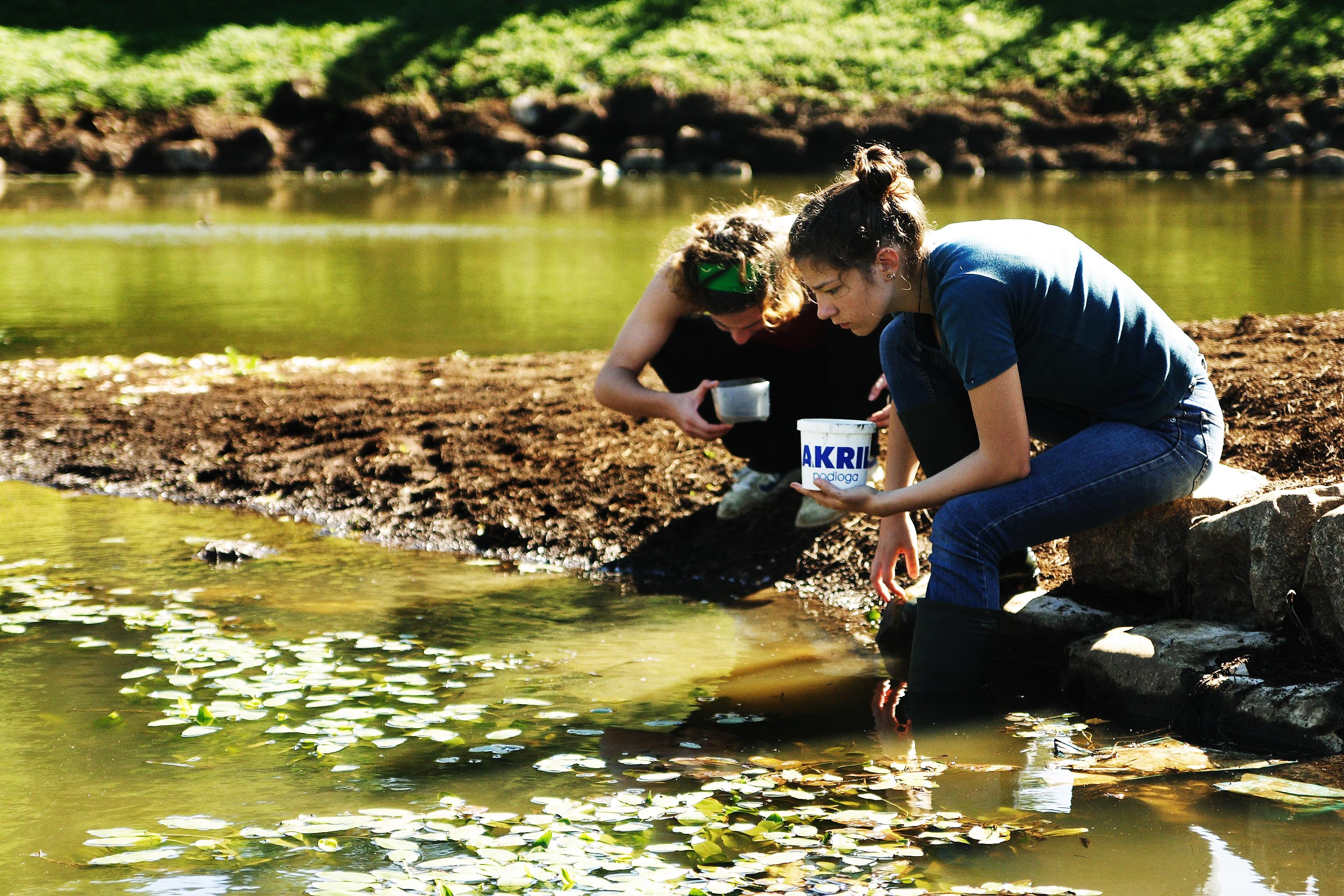 Volunteer for nature, volunteer for yourself – school volunteer programs in protected areas of nature