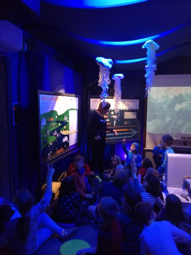 """Riječki Prirodoslovni muzej ugostio izložbu """"Plastična (noćna) mora"""""""